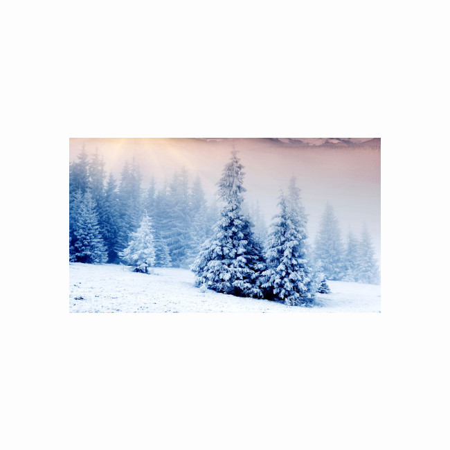 Visual / Photo background - Christmas/Winter (8)
